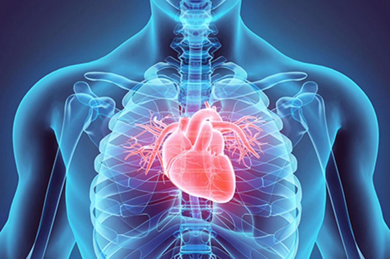 صورة اعراض امراض القلب , مسببات وظهور مرض القلب 624 9