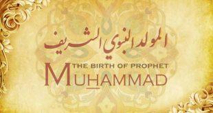 صورة اجمل الصور عن المولد النبوي الشريف , لو انت مسلم الموضوع دة يهمك ومفيد جدا