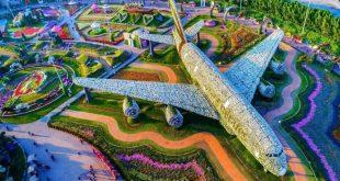 حديقة زهور دبي