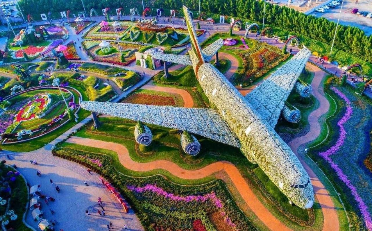 صورة حديقة زهور دبي 10955