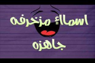 صورة اسماء بنات مزخرفه للشات 10975 7 310x205