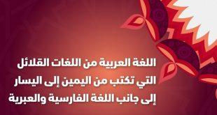 معلومات عن اللغه العربيه